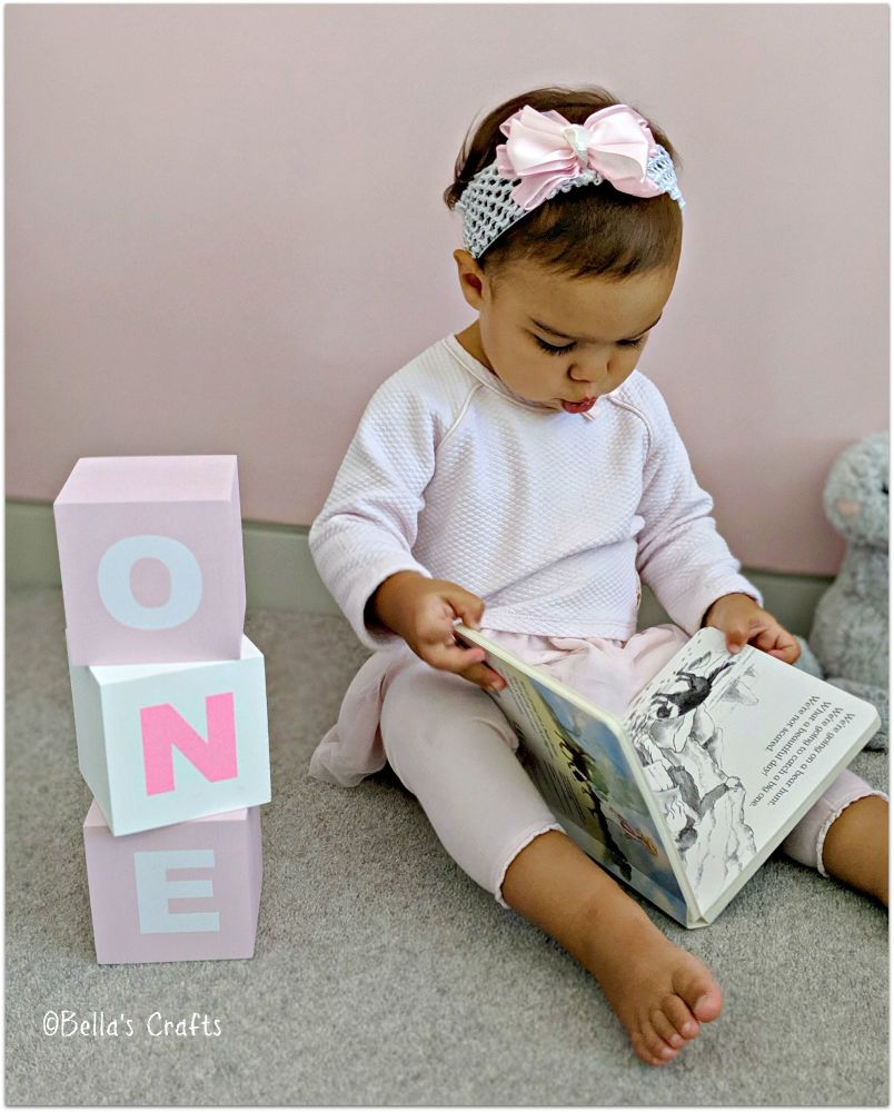 ONE Blocks 1st Birthday Photo prop