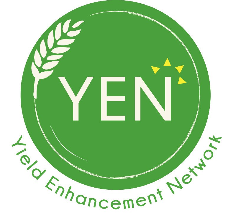 yen with tag