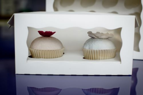 Cupcake Box - 2 Cupcakes (x 4 boxes)