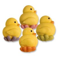 Sugar Chicks Pack of 12 Assorted Colours