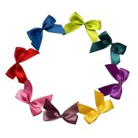 Satin Cakesicle  Bows - 5cm Self Adhesive Pack of 8 - TROPICAL MIX