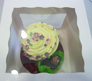 giant-cupcake-box-1