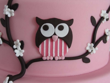 cakes by bien sugarcraft cutter - Owl3