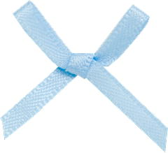 100 baby blue bows
