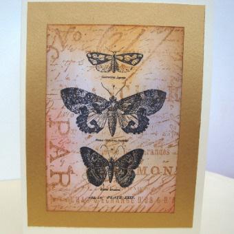 Vintage Butterflies handmade card C016