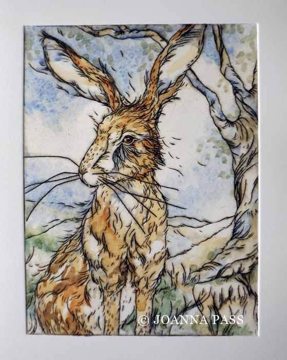 Hares patch