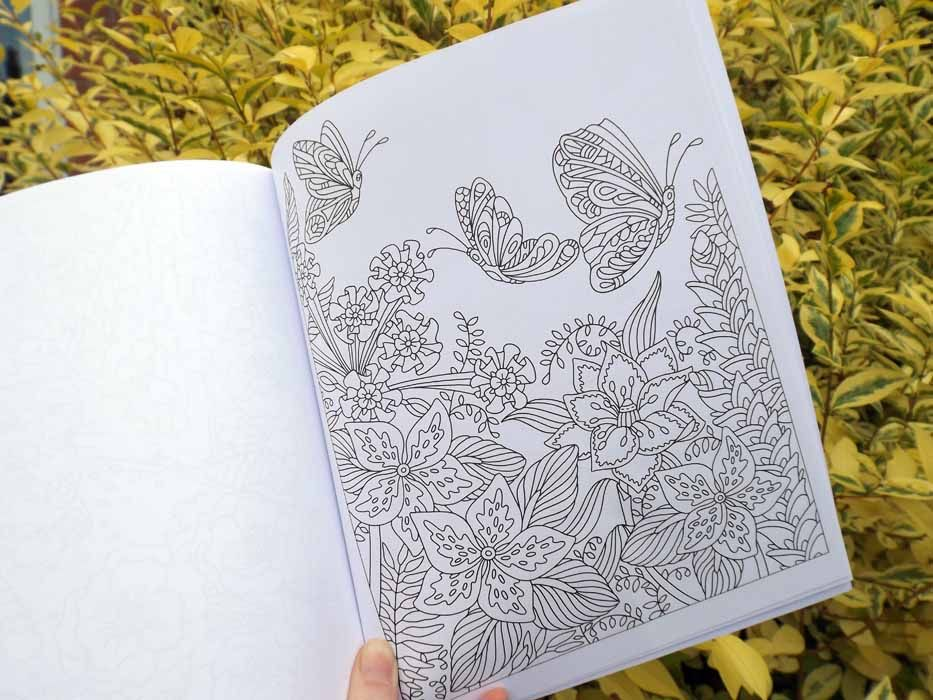 tropical butterfly page