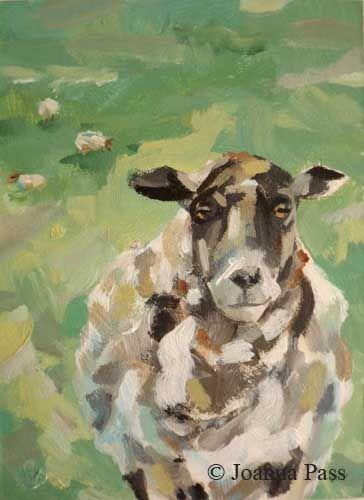 Marjories sheep