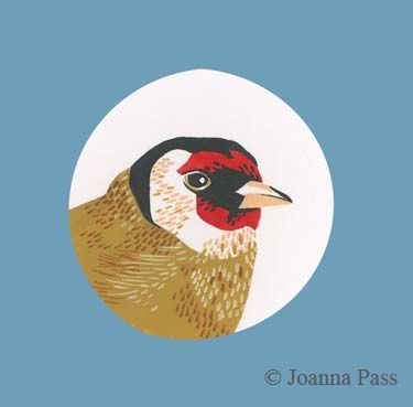 goldfinch circle