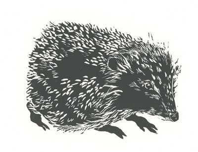 Hedgehog linocut