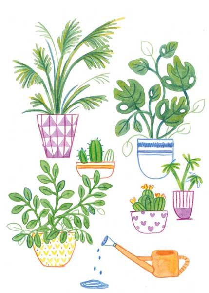 Watering the Houseplants