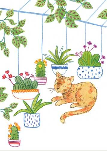 Greenhouse Cat