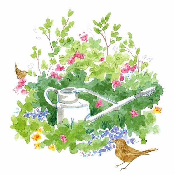 Garden Watering-can