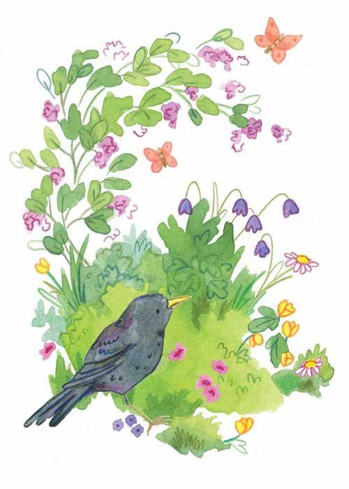 buttercup blackbird card
