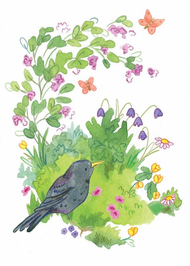 buttercup blackbird card