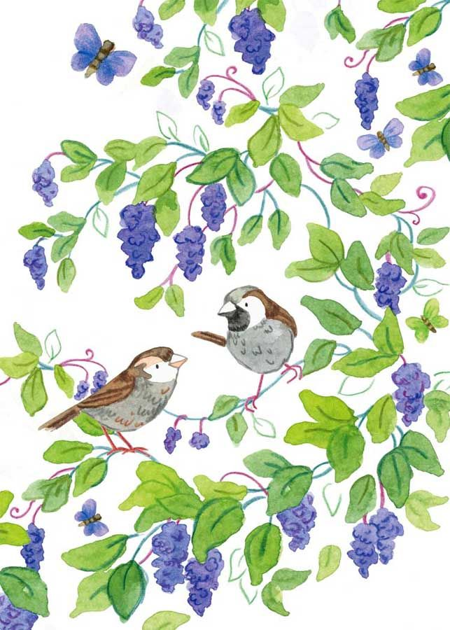 Lilac Tree Sparrows