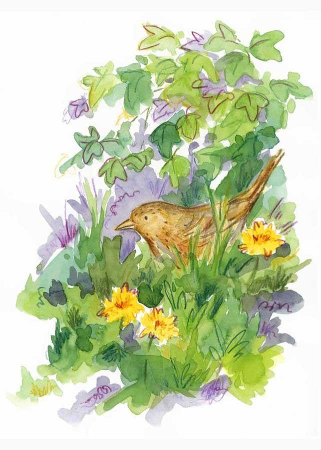 Springtime Blackbird