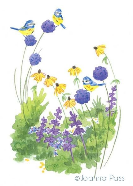 Allium Blue-tits