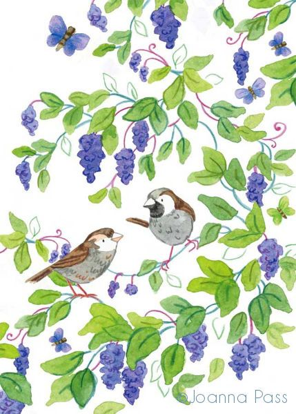 Lilac Tree Sparrows