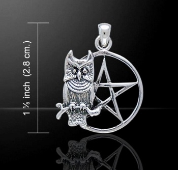 Perched Owl on a Pentacle Pentagram Pendant 925 Sterling Silver by Peter Stone