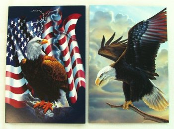 "Eagle ""American Pride"" 12x Blank Note Cards Envelopes & photo frame Tin"