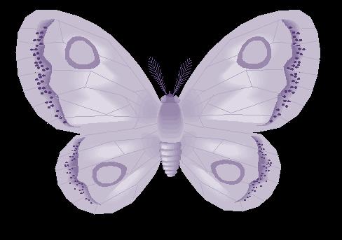 Butterfly-June
