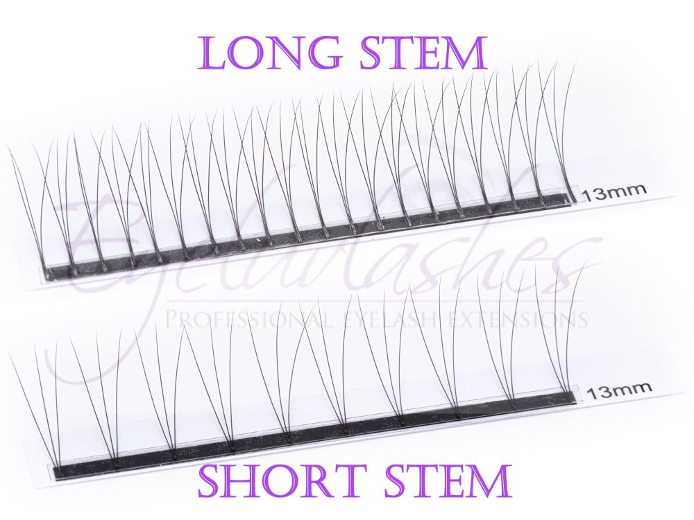 Long Stem Short Stem watermarked