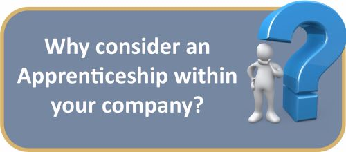 Why choose an Apprenticeship