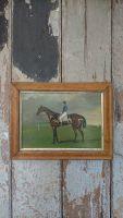 Race horse portrait