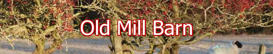 Old Mill Barn, site logo.