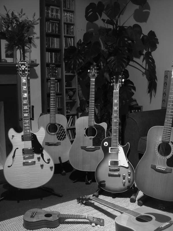 guitar family portrait