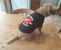 Dog pet t-shirt tee Paws to ride Hounda biker motorcycle black cotton delux