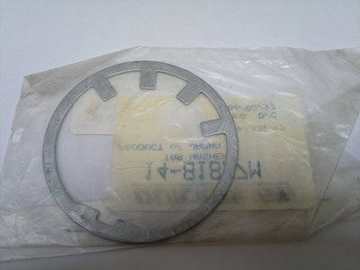 14-81877M LOCK WASHER