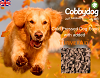 Cold Pressed Dog Food with added (3) (2)