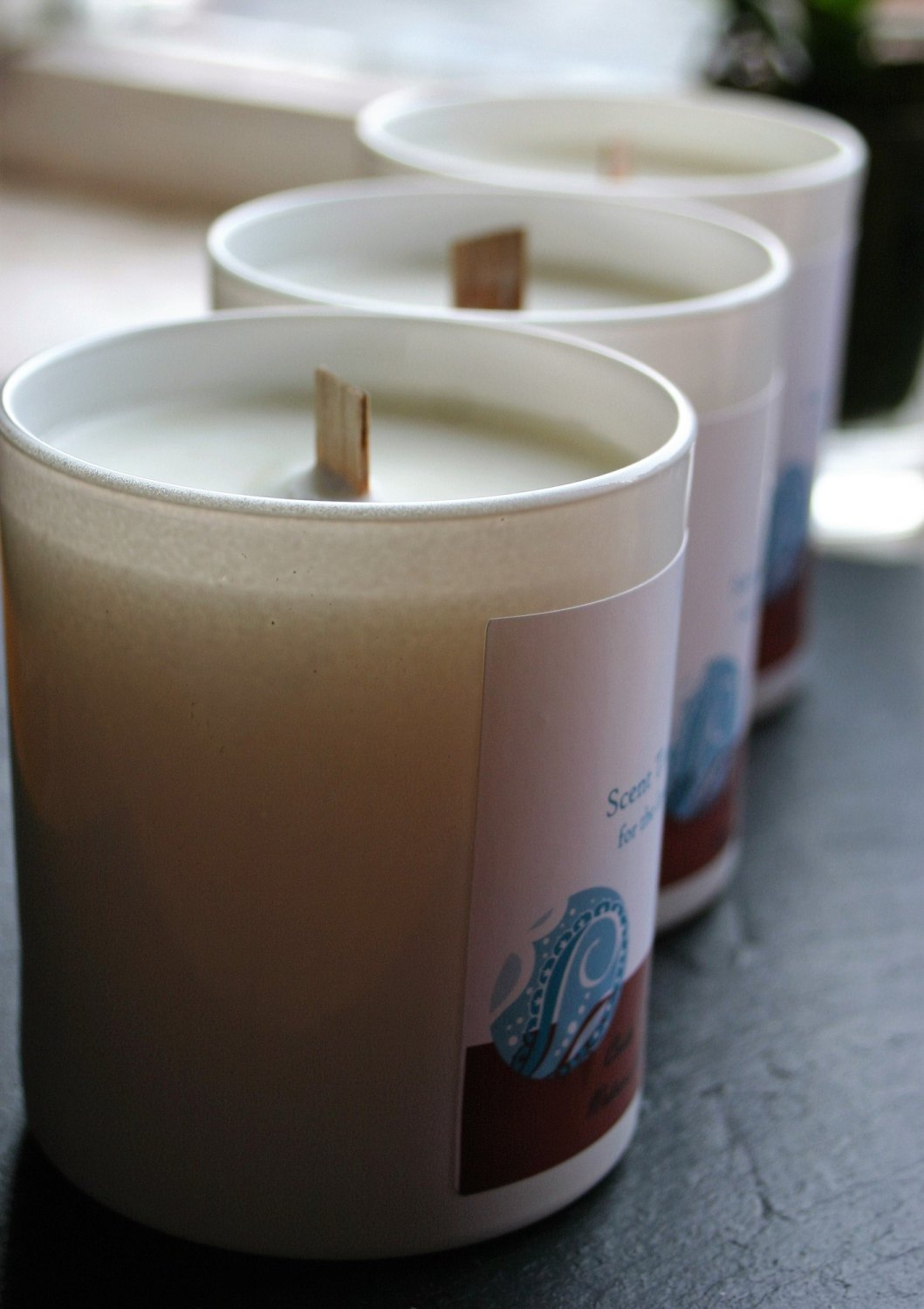 Cedar and Amrys Soy Wax Tumbler Candle