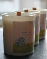 Lemongrass and Ginger Natural Rapeseed Tumbler Candle
