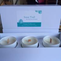 Triple Rapeseed Votive Gift Box