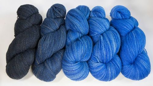 <!-- 001 -->4ply BFL and Masham Blue Ombre 18M
