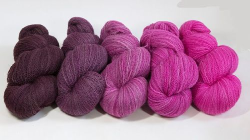 <!-- 001 -->4ply BFL and Masham Pink Ombre 18M