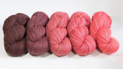 <!-- 001 -->4ply BFL and Masham Red Ombre 18M