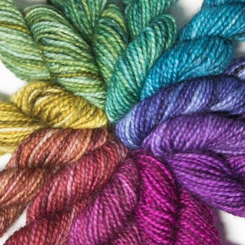 <!-- 004 --> 4ply BFL & nylon colour wheel - Shades