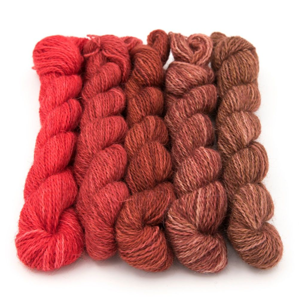 <!-- 004 -->One Farm Yarn - Red to Walnut mini skeins