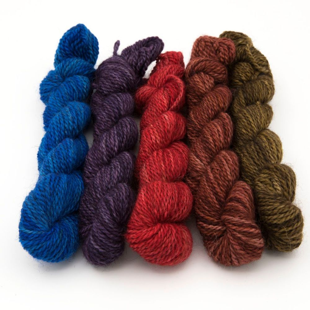 DK BFL Masham mini skeins - Bramble Collection