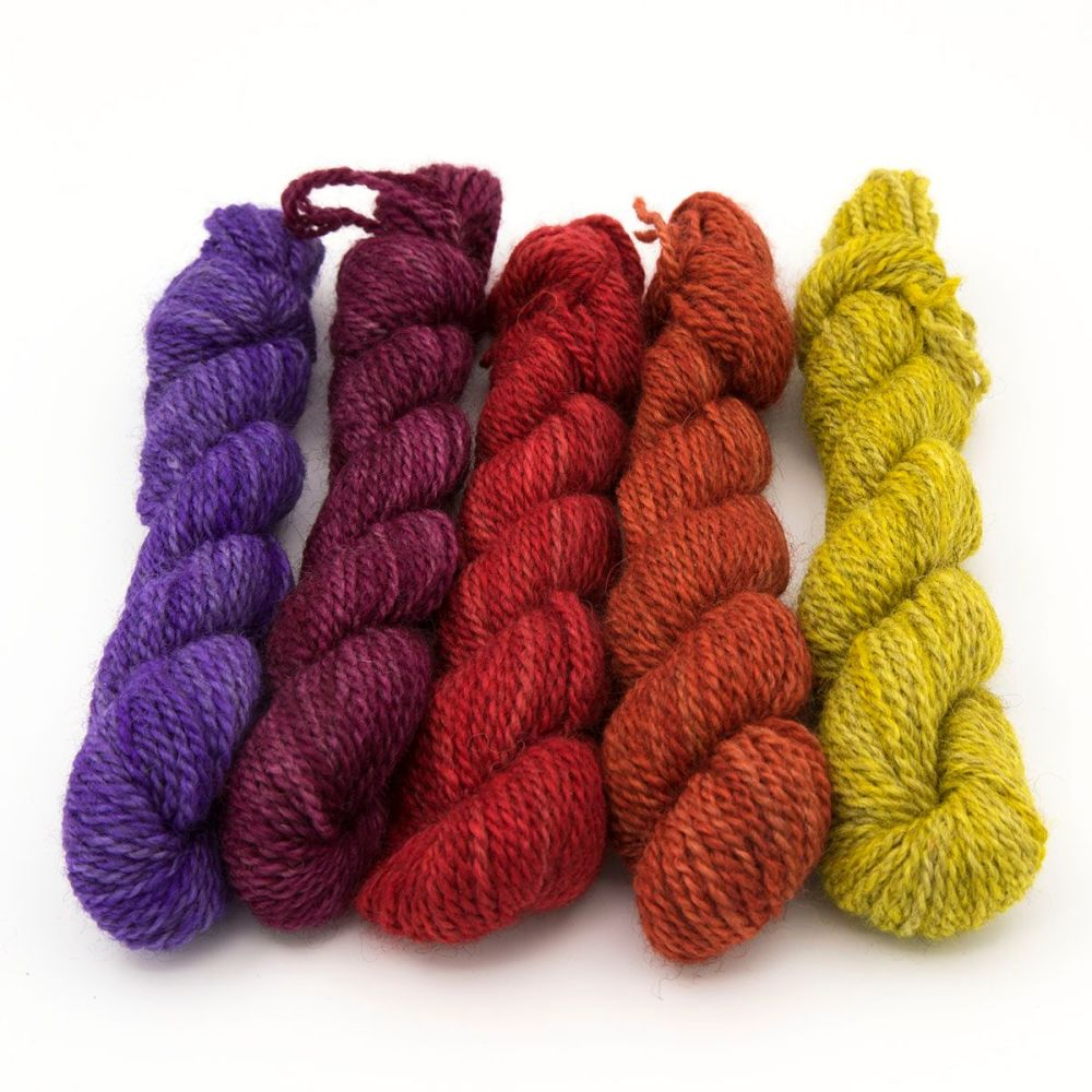 DK BFL Masham mini skeins - Circus Collection