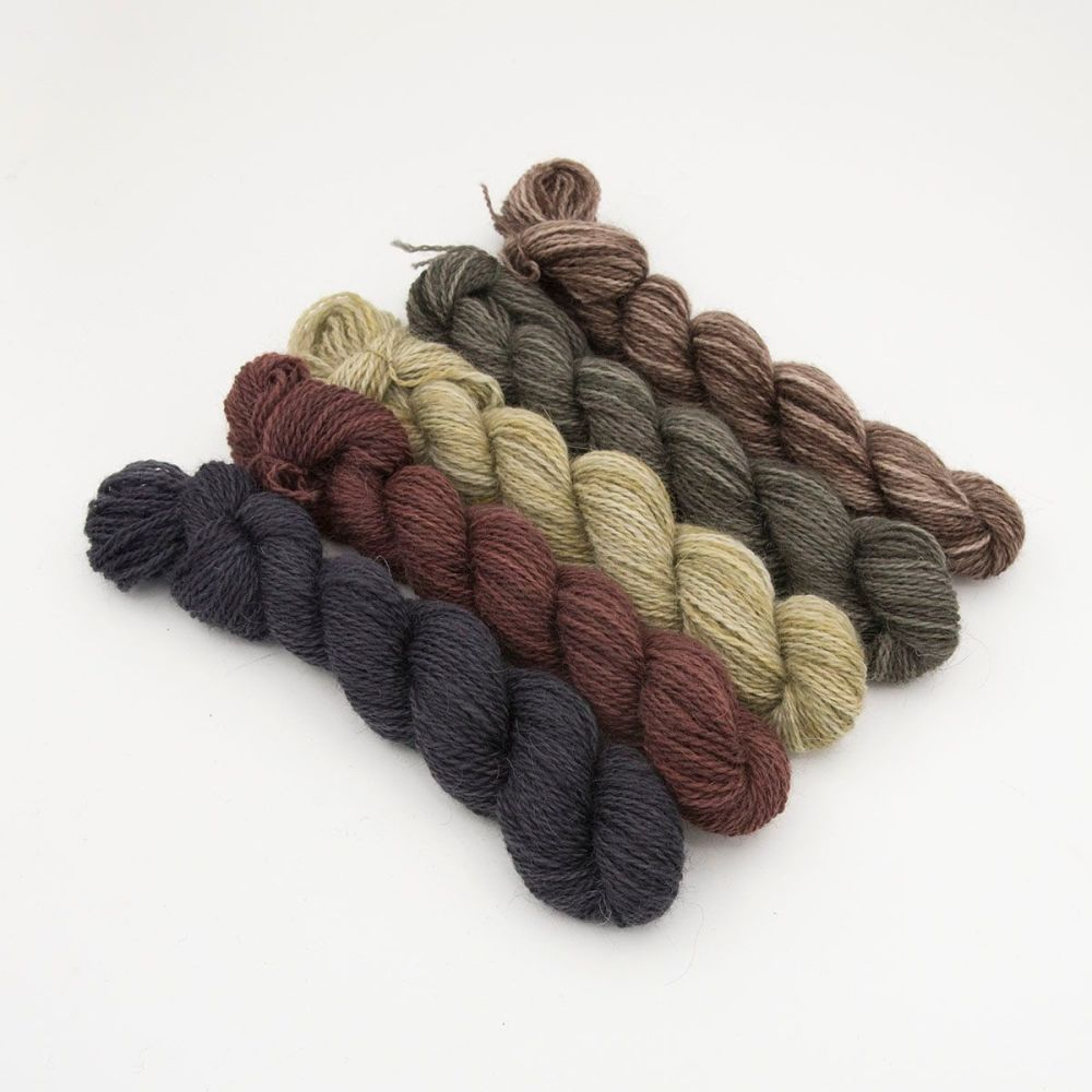 natural beauty gradient mini skeins one farm yarn hand dyed yarn the knitti