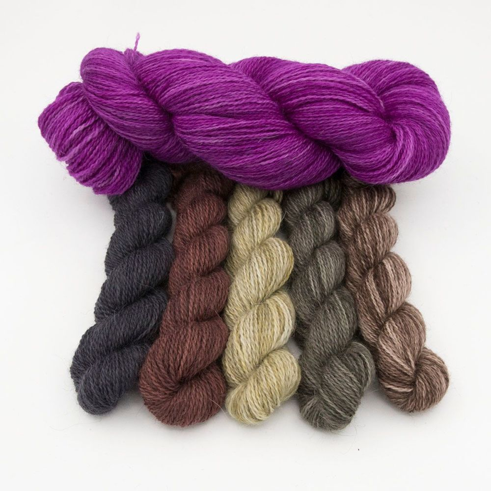 wisteria and natural beauty gradient mini skeins one farm yarn hand dyed ya