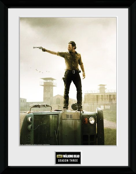 The Walking Dead , seasion 3   , 30 x 40 Collector Print