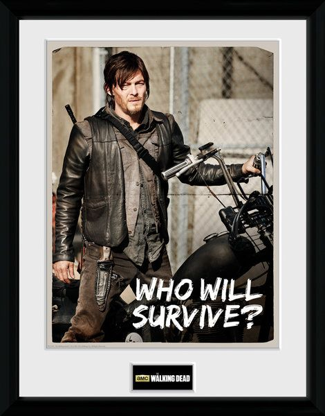The Walking Dead , Daryl  , 30 x 40 Collector Print