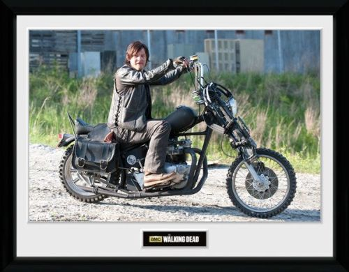 The Walking Dead , Daryl with bike  , 30 x 40 Collector Print