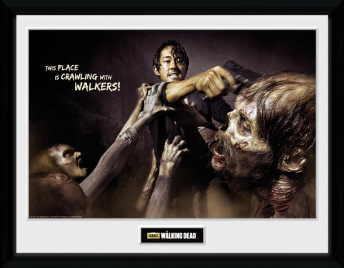 Framed Photographic > Collector Print The Walking Dead Glenn Attack 30x40